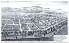 Bird's Eye View Poplar City, Moses Davis, Santa Clara County 1876