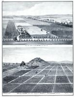 D.M. Harwood, Lone-Hill Vineyard, J.H. Ogier Residence and Farm, Santa Clara County 1876
