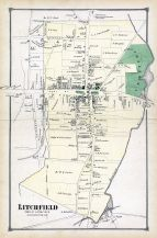 Litchfield Town, Litchfield County 1874