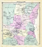Salisbury, Litchfield County 1874