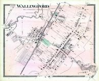 Wallingford Town, New Haven County 1868