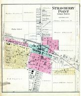 Strawberry Point, Clayton County 1886