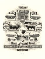 Mount Prospect Farm, A. R. Ohl and Sons, Iowa State Atlas 1904