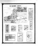 Mulberry Grove, New Berlin, New Hamburg, Dudleyville, Elm Point PO, Stubblefield, Oakdale, Fairview, Bond County 1875 Microfilm