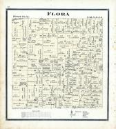 Flora Township, Boone County 1886