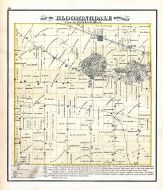 Bloomingdale Township, DuPage County 1874