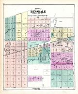 Hinsdale, DuPage County 1874