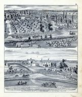 Bird's Eye View Stock Farm of Joseph Field, Chas. Bradshaw Mound Farm, Greene County 1873