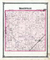 Braceville, Grundy County 1874