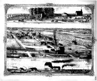 Worden Residence and Premises, New City of Worden Bird's Eye View, Madison County 1873 Microfilm