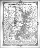 Township 4 North Range 6 West, Madison County 1873 Microfilm