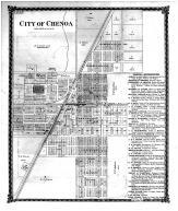 Chenoa City, McLean County 1874 Microfilm