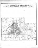 Buffalo Heart Township, Sangamon County 1874