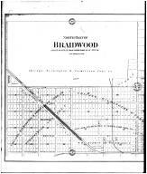 Braidwood - North - Left, Will County 1893