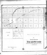 Braidwood - South - Left, Will County 1893