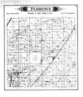 Florence Township, Symerton, Will County 1893