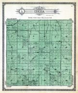 Odessa Township, Rice County 1919