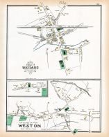 Wayland 2, Weston 2, Middlesex County 1889