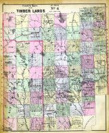 Timber Lands Map 4, Aroostook County, Penobscot County, Mars Hill, Houlton, Island Falls, Maine State Atlas 1884