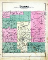 Forest Township, Genesee County 1873