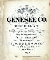 Title Page, Genesee County 1873