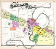 Blissfield and Lyon, Lenawee County 1874