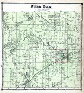 Burr Oak Township, St. Joseph County 1872
