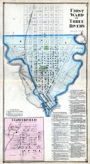 Three Rivers - Ward 1, Flowerfield, St. Joseph County 1872