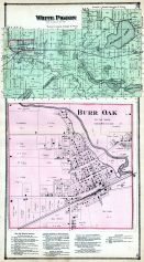 White Pigeon Township, Burr Oak, St. Joseph County 1872