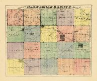 County Map, Washtenaw County 1874
