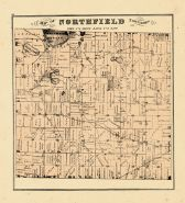 Northfield Township, Washtenaw County 1874