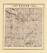 Salem Township, Washtenaw County 1874