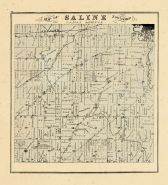 Saline Township, Washtenaw County 1874