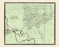Saline, Washtenaw County 1895