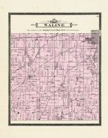 Saline Township, Washtenaw County 1895