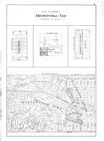 Minnetonka Tsp, Willistone Park, Lilly Lake, Temples Garden Lots, Palestine, Hennepin and Ramsey Counties 1898
