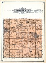 Bird Island Township, Olivia, Renville County 1913