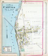 Cayuga Village, Cayuga County 1904