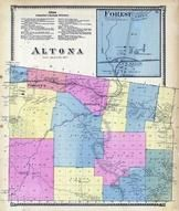 Altona Township, Forest, Great Chazy River, Clinton County 1869