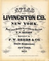 Title Page, Livingston County 1872