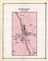 Woodbourne, Livingston County 1872