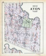 Avon Town, Livingston County 1902