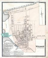 Wilson, Niagara and Orleans County 1875