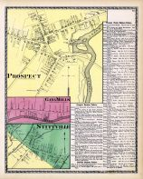 Prospect, Gang Mills, Stittville, Oneida County 1874