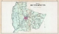 Butternuts Town, Otsego County 1903