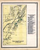 Newark Valley 002, Tioga County 1869