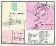 Williamson, Williamson East, Pulteneyville, Wayne County 1874