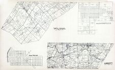 Wilson, Port William, Martinsville, Liberty, Clinton County 1903