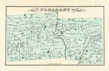 Pleasant, Logan County 1875