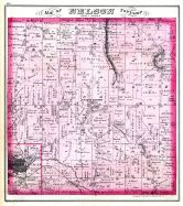 Nelson Township, Portage County 1874
